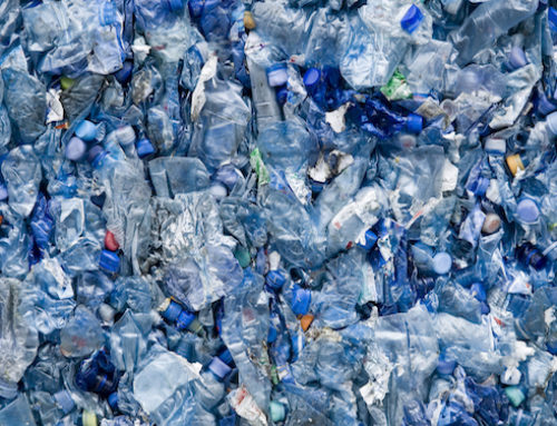 Waste Disposal – What is the Importance of Effective Waste Disposal?